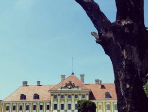 Visit Vukovar Srijem Suvenirnice Vukovar